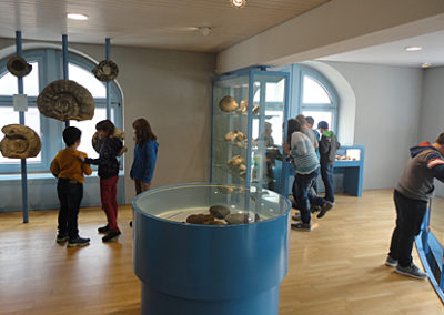 Museum-Schule1