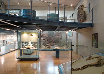 Museum-leer1