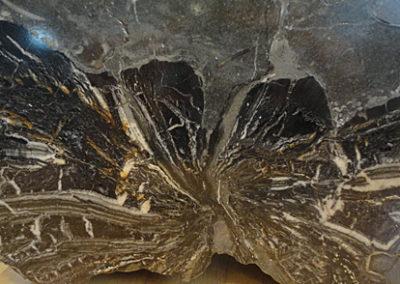 Holz-Fossil-Ausstellung